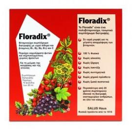 Power Health Floradix Συμπλήρωμα Διατροφής Για Την Ελλειψη Σιδήρου 10x20ml Φιαλίδια